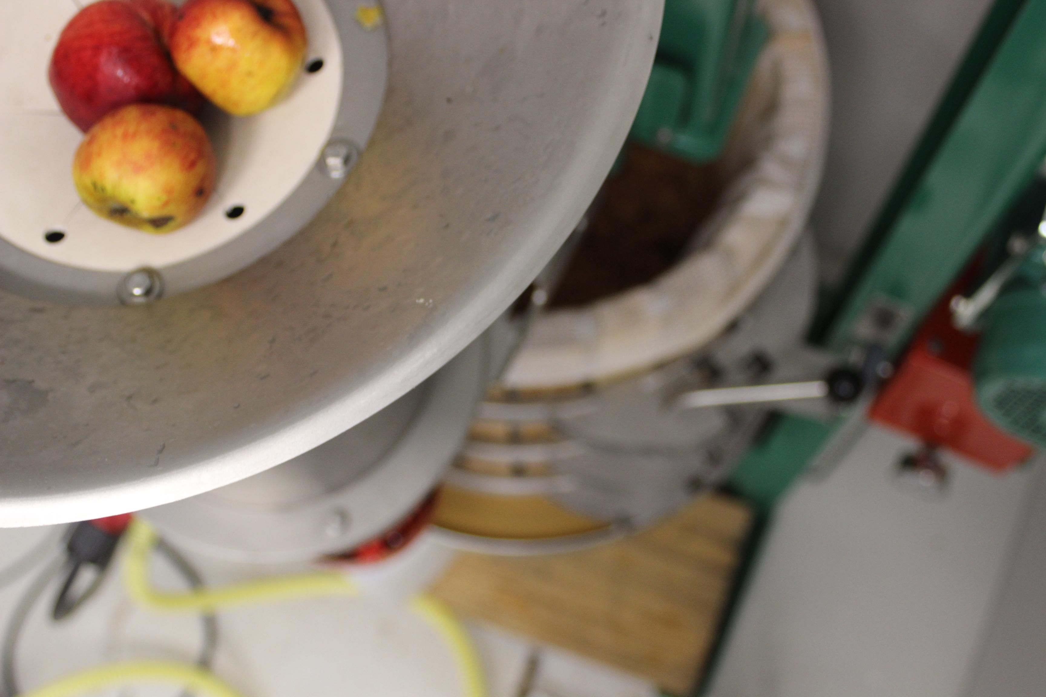 Så krossar vi äpplen, slik att vi skal få ut så mycket juice som möjligt